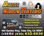 Artistic Window Tinting